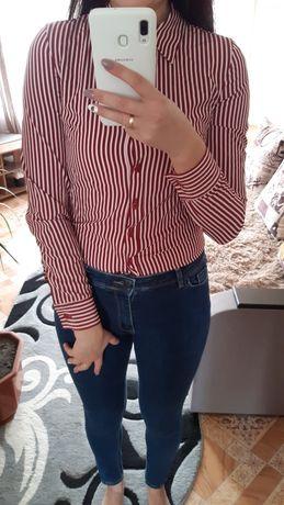 Блуза в полоску    .