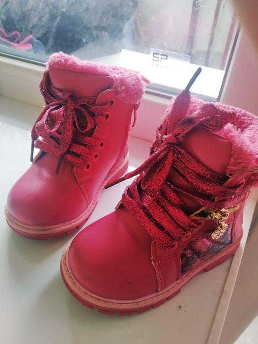 Зимние ботинки на малышку Шостка - изображение 1