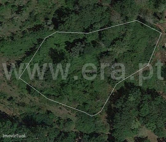 Terreno rústico com 4.000 m2 em Freitas