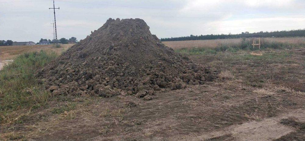 Oddam glinę z wykopu Czarnocin - image 1