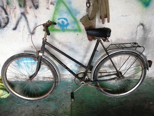 2,rowery malwa jeden w wersji eksportowej