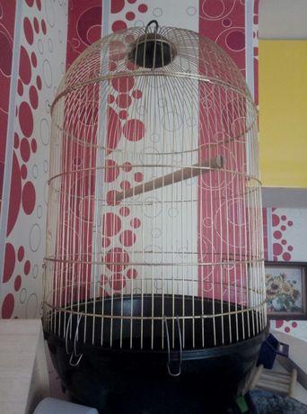 Золотая клетка для птиц
