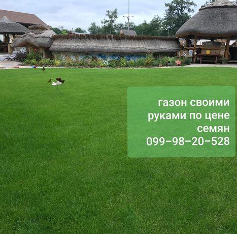 Продам Низкорослый ГАЗОН СВОИМИ РУКАМИ по цене семян трава спорт мини