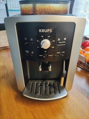 Ekspres do kawy ciśnieniowy Krups EA 8005