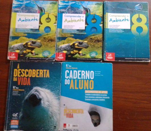 Manuais+cadernos de atividades 8°ano(vários manuais,ver fotos)