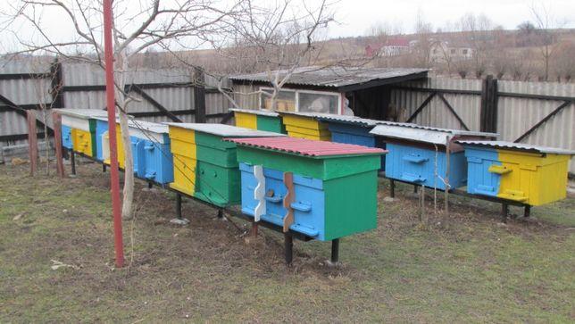 Вулики. Бджоли. Бджолопакети 2020.