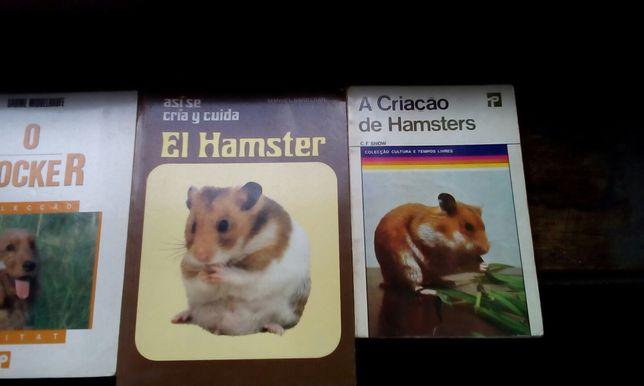 Livros de criação de hamsters.