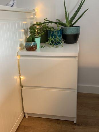 IKEA malm komoda/ szafka nocna biała