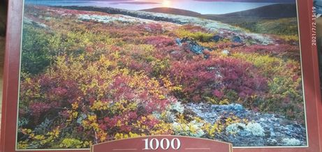 Пазл 1000 деталей Castorland Puzzle