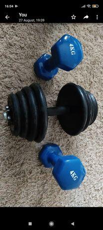 Pesos halteres musculação