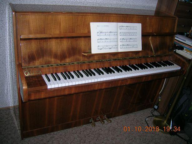 pianino Calisia brązowe zadbane orzech połysk