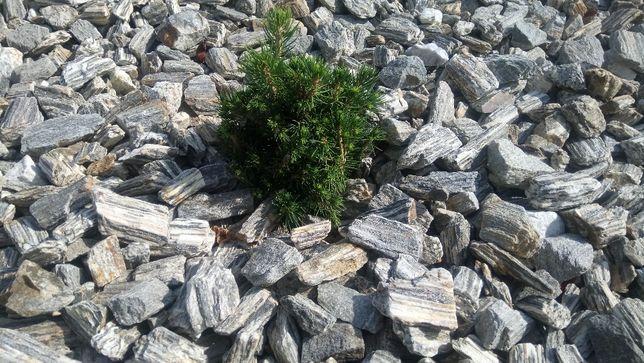 Kora kamienna gnejs pasiasty kamień naturalny do ogrodu grys głaz