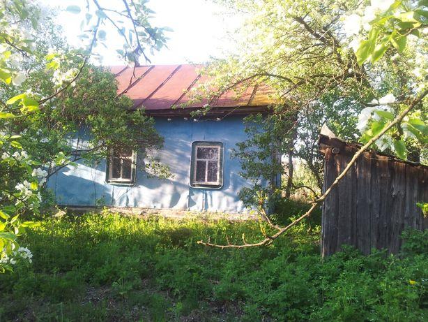 Продам дом в селе Савинка Козелецкого р-на Черниговская обл .