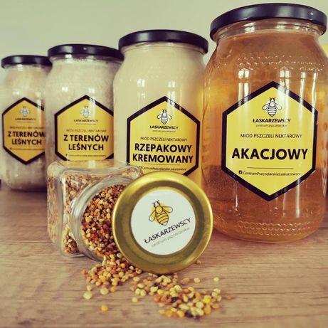 Miód pszczeli z własnej pasieki miód naturalny lipowy