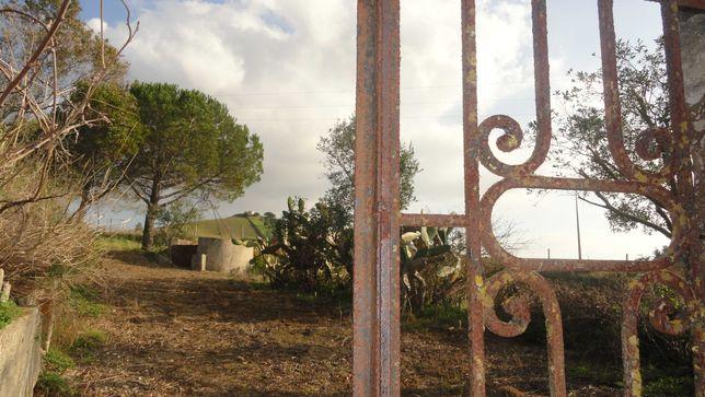 Monte Ribatejano/quinta, ás portas de Lisboa.Paisagem deslumbrante.