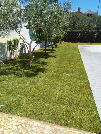 Jardinagem/ sistemas de rega/ podas/canalização e reparação.