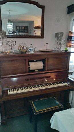 Piano sem cauda (opção de tocar sozinho)