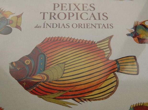Peixes Tropicais das Índias Orientais | TASCHEN (V.P.)