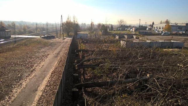 Wycinka drzew niebezpiecznych czyszczenie działek rozbiórki wyburzenia