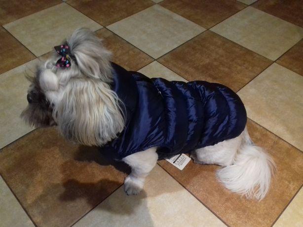 Ubranko, kurtka dla psa shih tzu, maltańczyk itp.