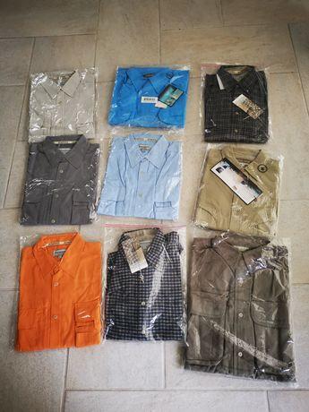 Koszula firmy scierra