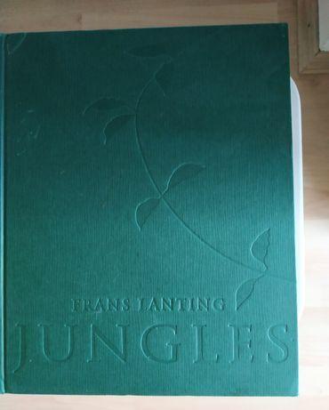 Książka album pod tytułem Dzungle w języku angielskim.