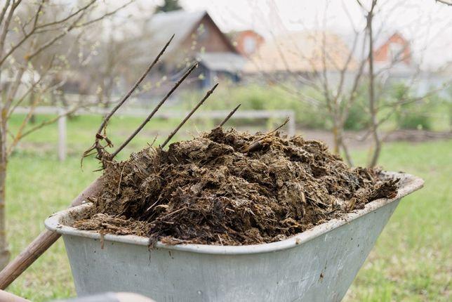 Obornik, naturalny nawóz dla roślin idealny pod trawnik 60l