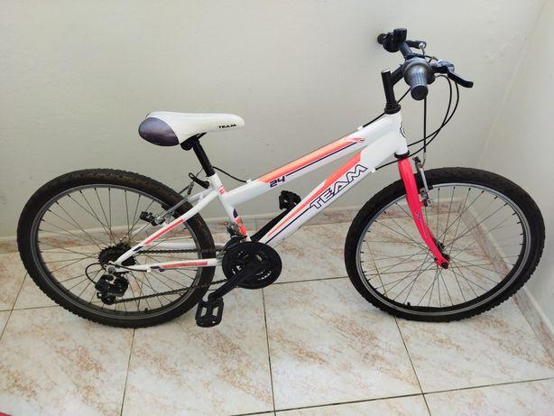 Bicicleta Team Shimano 18v Roda 24