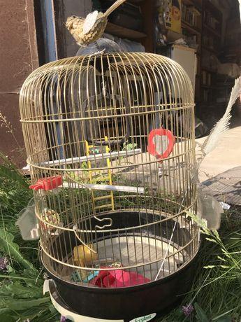 Клетка для попугаев Ferplast
