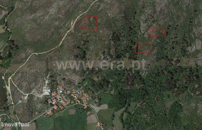 Terreno para plantações com 7.606 m2 em Queimadela