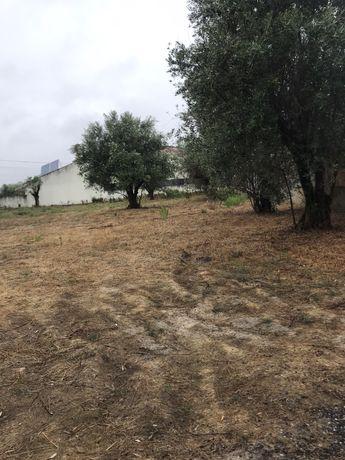 Terreno construçao moradia em brogal parceiros leiria