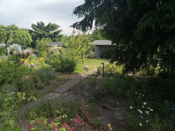Ogródek działkowy Rod tarnogaj