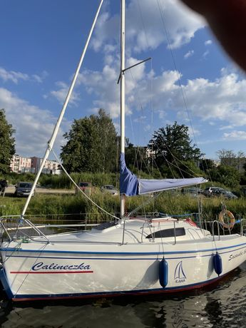 Last minute Czarter jachtu Sasanka / Sportina Jeziorak/ Iława/Mazury
