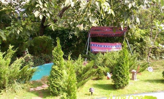 Уютный дом в Аркадии с зеленым участком и бассейном