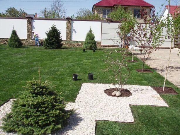 озеленение,укладка газона,благоустройство