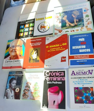 lote livros luck luke,maias,revolução, ciência, susana tamaro,rita
