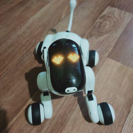 Интерактивная собака puppy go