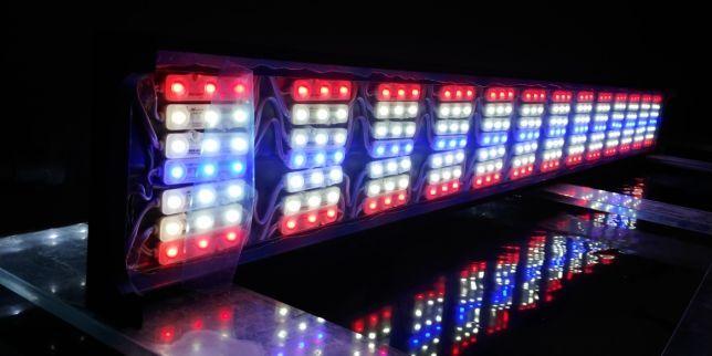 Moduł Samsung SMD 5730 - 1.2 Wat Czerwony Do belki LED
