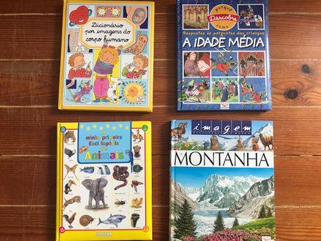 Livros educativos crianças, Dicionário, enciclopedia,