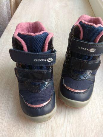 Чоботи, черевики Geox