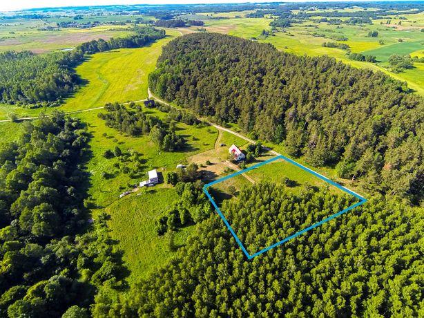 Działka niezabudowana   pow. ca. 4250 m2   w sąsiedztwie lasu