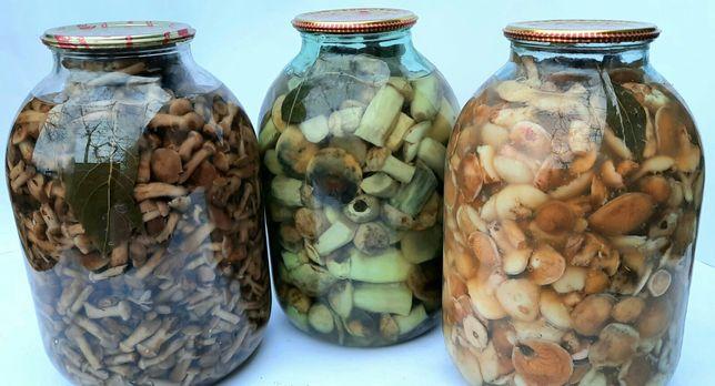 Мариновані гриби! Опеньки, маслята, підосиновики! Також є сушені!