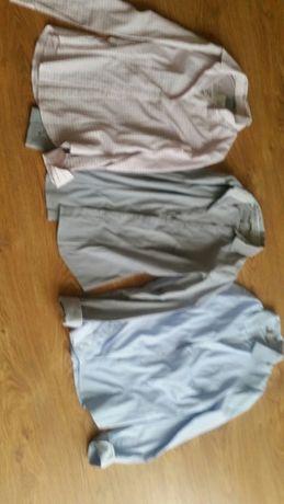 Koszule-bluzki