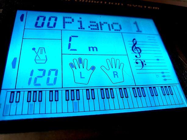 keyboard Casio, Dynamiczna klawiatura, MIDI, duży ekran, Pitch Bend,