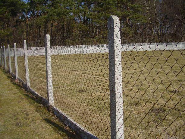 Słupki betonowe 2.20 m ogrodzeniowe , szpalerowe - Producent!!!