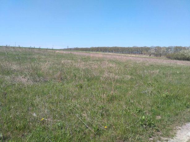 Продам участок земли