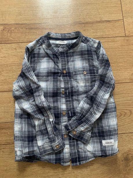 Koszula newbie 98 sesja chłopiec