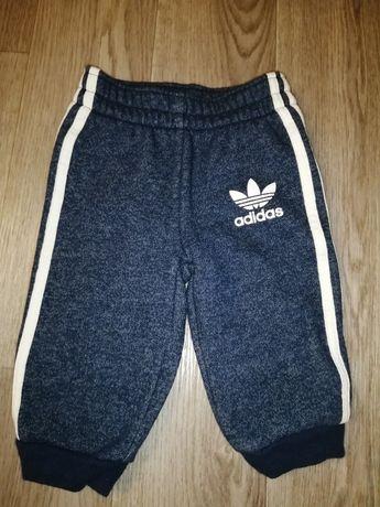 Спортивные Adidas