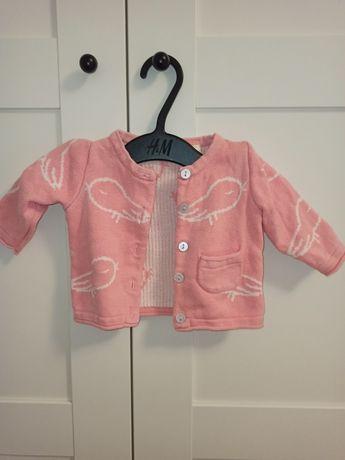 Sweter Lupilu r. 56