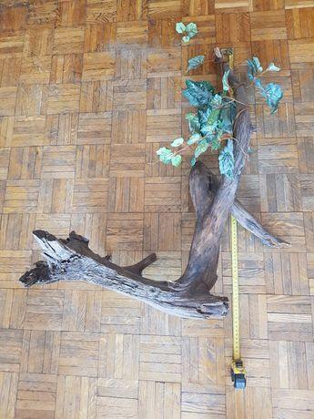 Duży korzeń do terrarium, sztuczna roślina gratis.